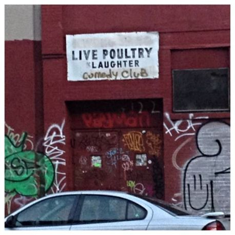Live Poultry Laughter